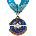 Superstar Swim Award Medal w/ Millennium Neck Ribbon