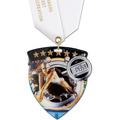 CSM Shield Swim Award Medal w/ Satin Neck Ribbon