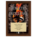 Athletic Excellence Swimming Award Plaque - Cherry Finish