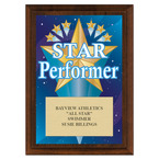 Star Performer Swimming Award Plaque - Cherry Finish