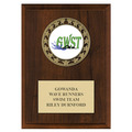 RS14 Medal Swimming Award Plaque - Cherry Finish