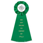 Empire Swim Rosette Award Ribbon
