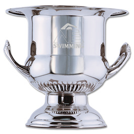 Wine Cooler Award Trophy