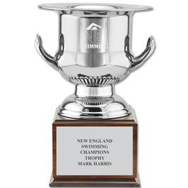 Wine Cooler Swim Award Trophy w/ Cherry Base